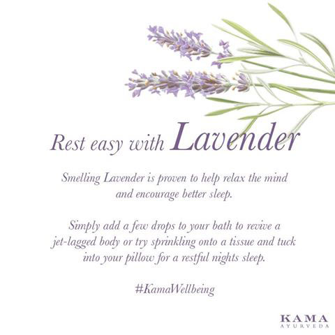 Ayurvedic treatment: lavender
